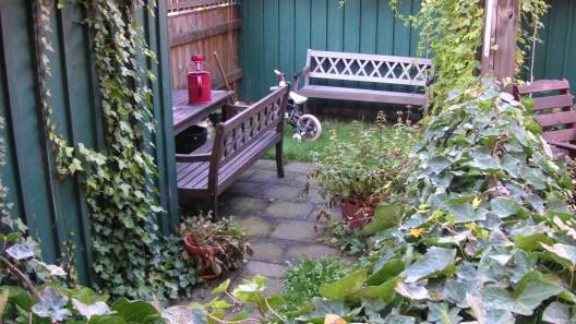Trädgård med bänkar
