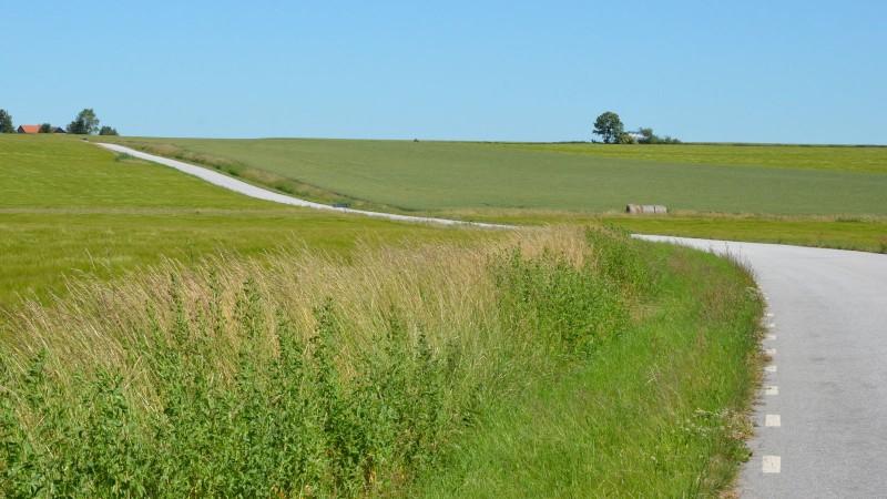 Landsväg. Foto: Staffanstorps kommun