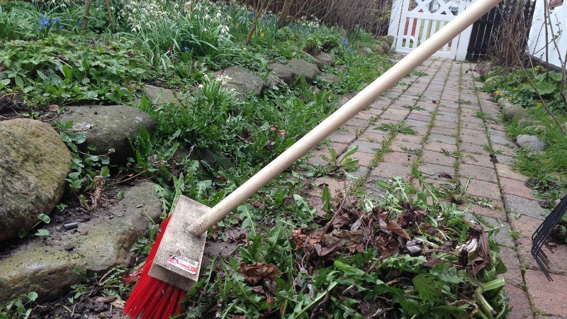 Vårstädning i trädgården Foto:Lisbeth Svensson
