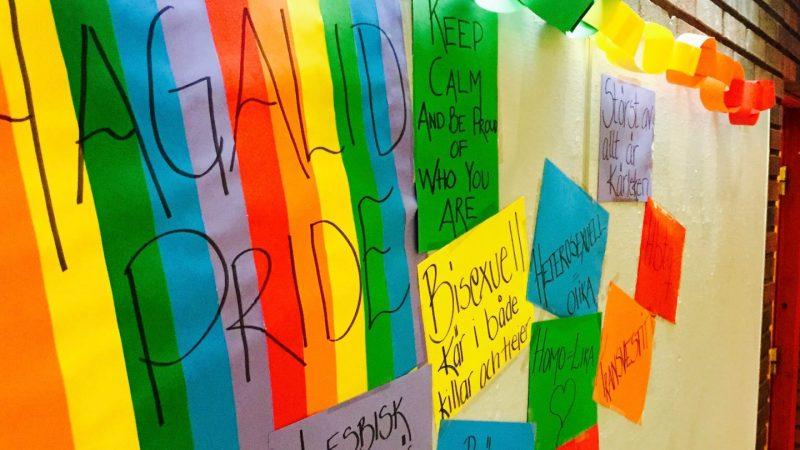 Hagalid Pride Foto: Johannes Nielsen