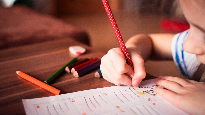 Inlärning. Foto: picjumbo_com via Pixabay