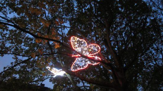 Fjärilar i Pileparken i Staffanstorp Foto Marie Schyllert