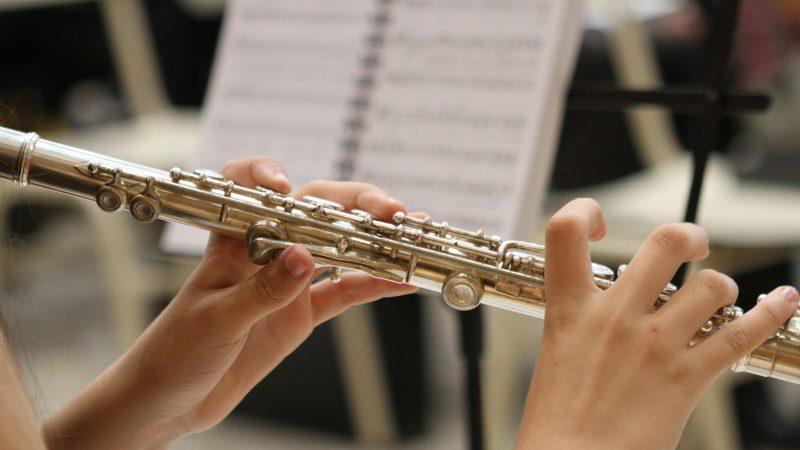 Musikinstrument. Foto: Pixabay