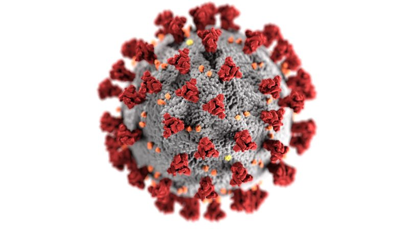 Bild på coronavirus/covid-19. Foto: CDC/Unsplash