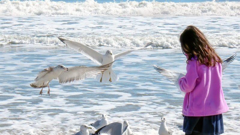 Flicka står vid havet. Foto: Pixabay