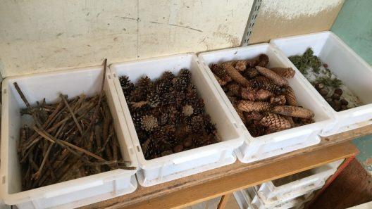 Lådor med kottar, pinnar och annat naturmaterial.