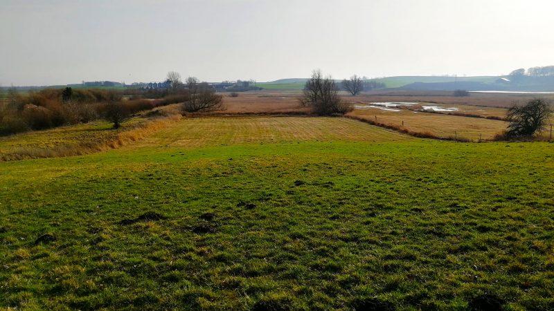 Gröna ängar och gräsytor som förorenats på gamla Grevie skjutbana.